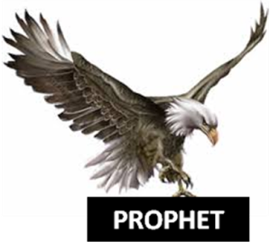 Image result for eagle prophet